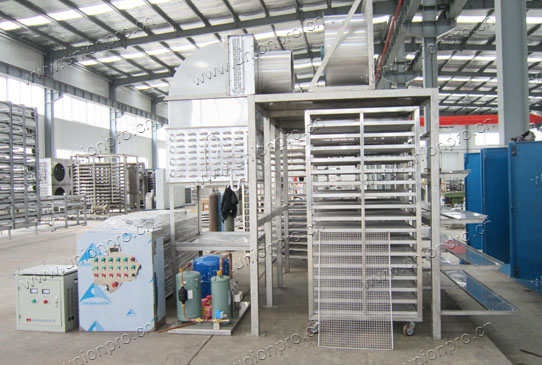 Cold Air Food Drying Machine(Room)