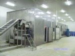 Fluidized Tunnel Quick Freezer